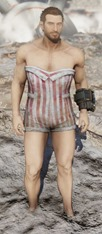 fallout-76-swimsuit