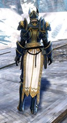 gw2-logan's-pact-marshal-outfit-norn-7