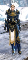 gw2-logan's-pact-marshal-outfit-norn-8