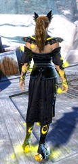 gw2-shrine-guardian-outfit-nornfemale-3