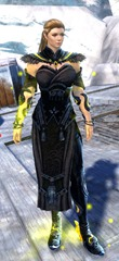gw2-shrine-guardian-outfit-nornfemale-4