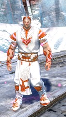 gw2-shrine-guardian-outfit-nornmale